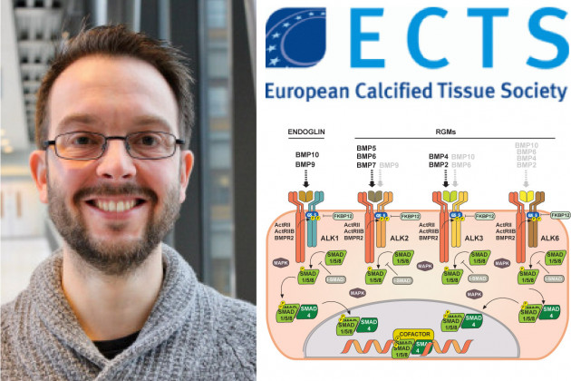 Gonzalo Sanchez-Duffhues elected member of the Young Academy of the European Calcified Tissue Society.