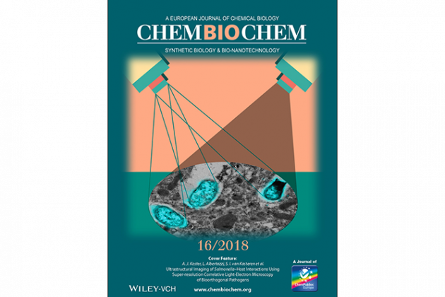 Publication makes cover of ChemBioChem