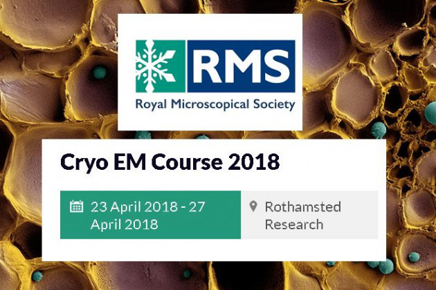 Bram Koster gave a Keynote lecture at the RMS Cryo EM Course