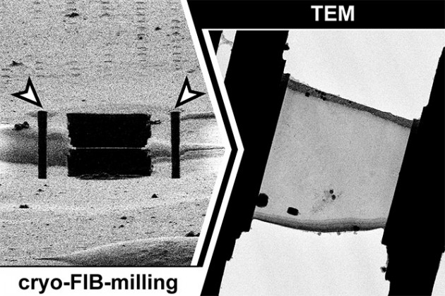 Improving throughput of cryo-lamella milling