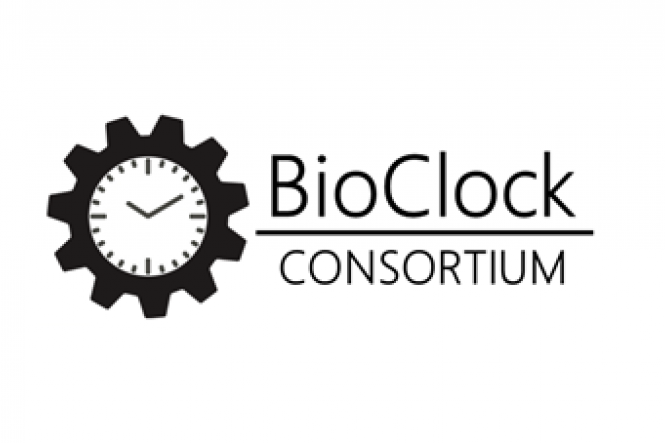 A multi-million grant to keep the biological clock healthy