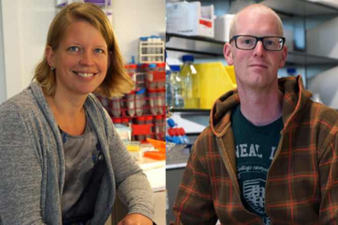 Off Road-grants for two young CCB-researchers